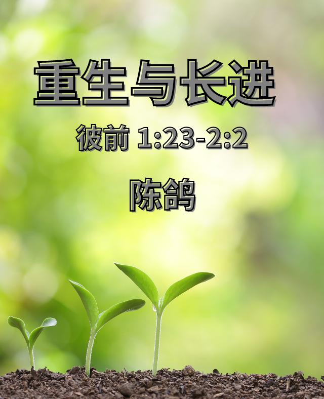 重生与长进(陈鸽)2019-05-12