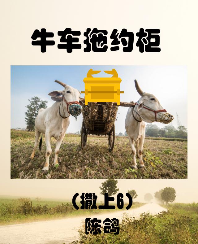 牛车拖约柜(撒上6)