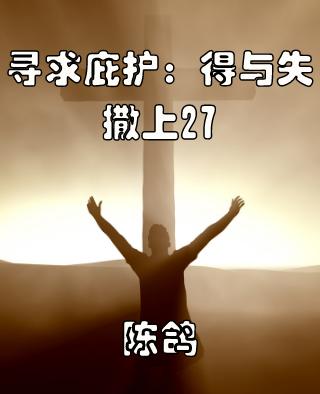 寻求庇护:得与失(撒上27)