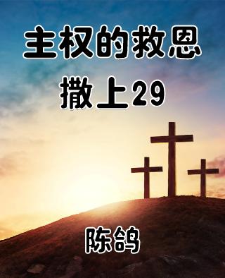 主权的救恩(撒上29)