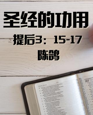 圣经的功用(提后3:15-17)陈鸽