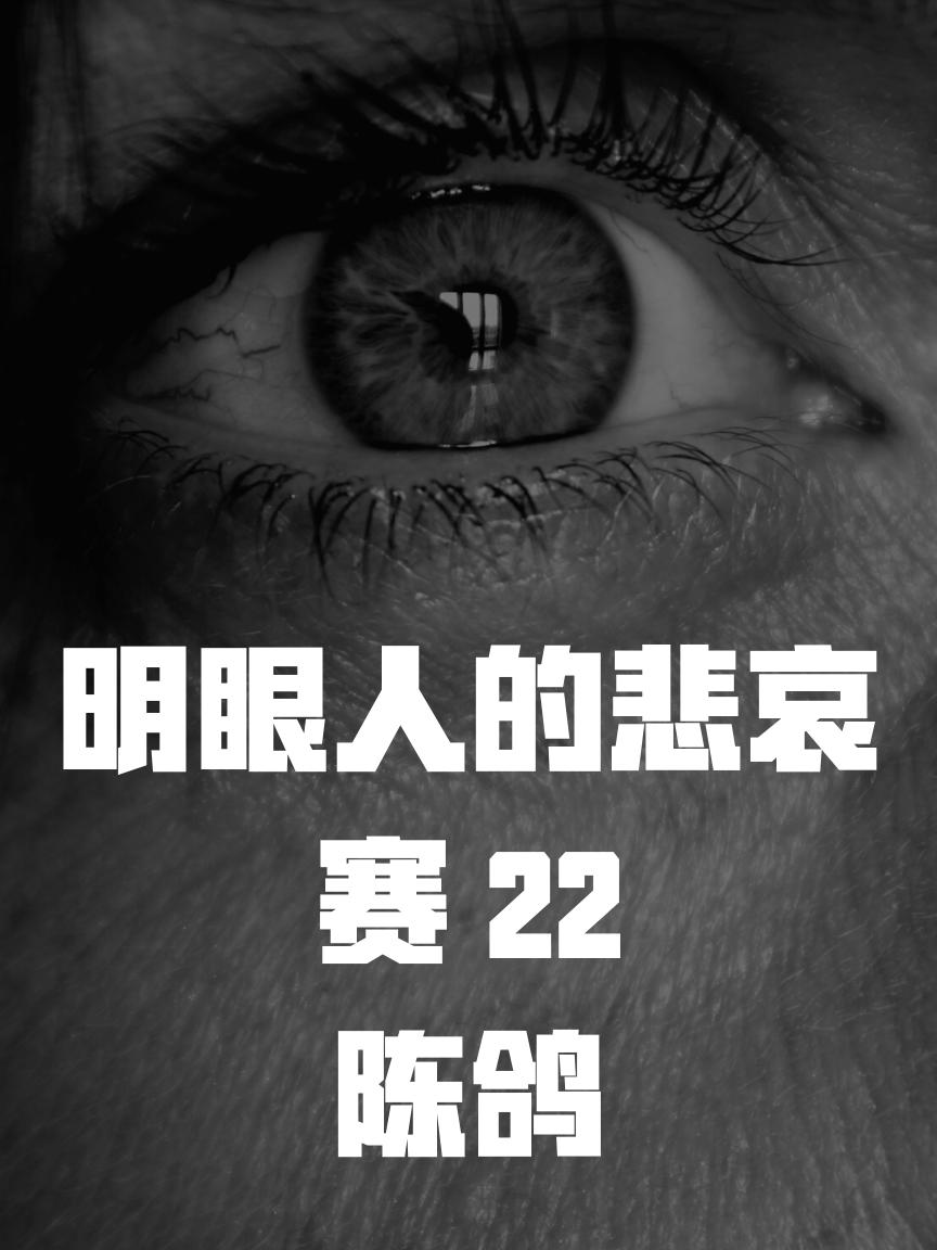 明眼人的悲哀 赛22